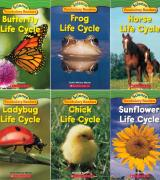 Life Cycles – Set of 6 Books