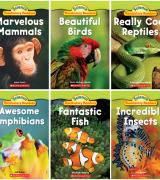 Animal Groups – Set of 6 Books