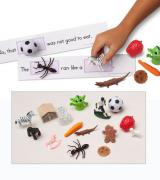 Word Sentences with Objects. Primer Level