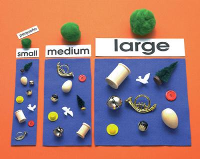Size Sort - E&O Montessori Materials-www.montessorimaterials.com