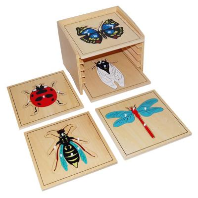 Insect Puzzle Cabinet with 5 Puzzles
